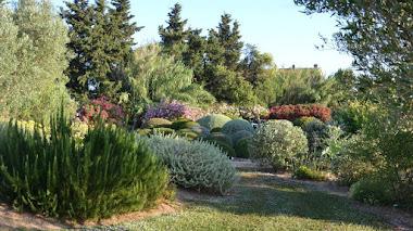 Botanical Dry Garden, un jardín de secano bajo el sol de la Toscana