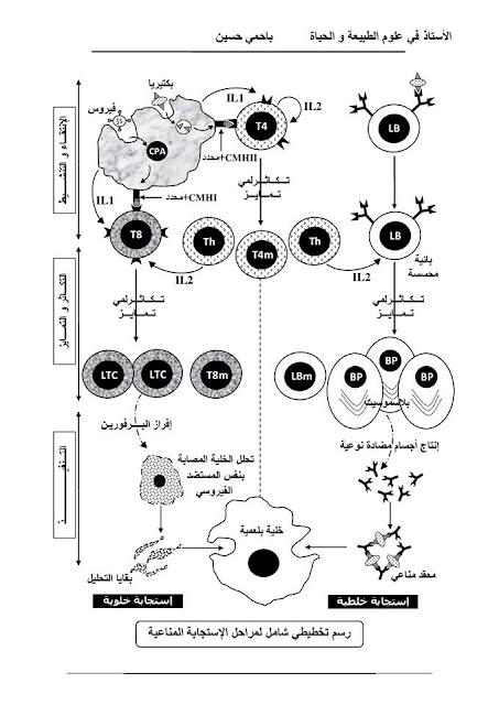 مخطط شامل في المناعة للعلوم الطبيعية السنة الثالثة ثانوي