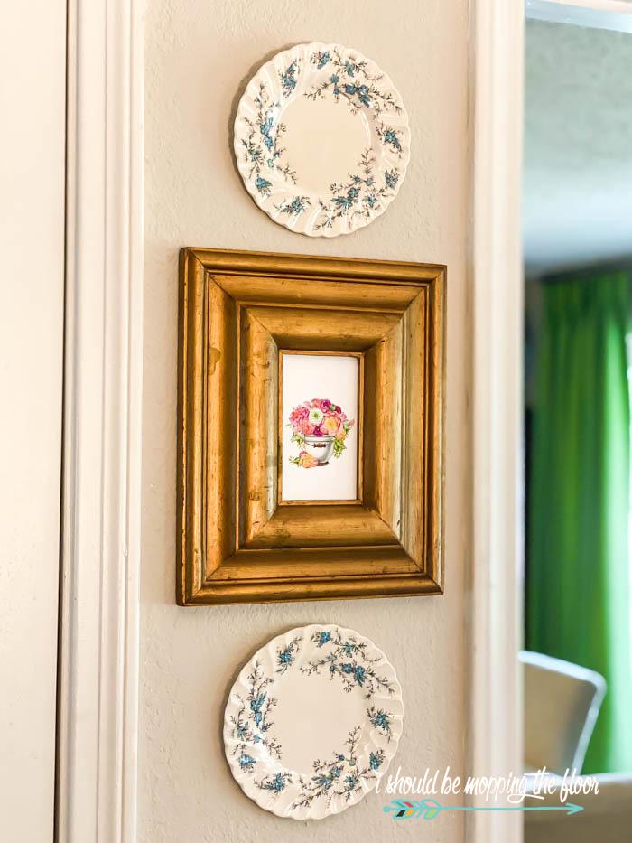 Plate and Frame Display