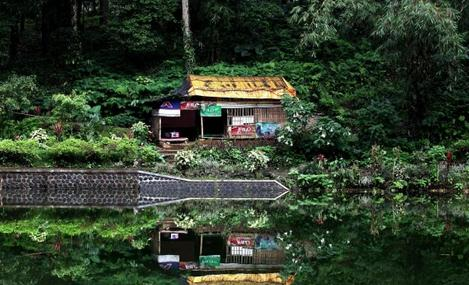 Keindahan Tempat wisata rowo bayu di banyuwangi