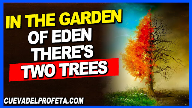 In the garden of Eden, there's two trees - William Marrion Branham