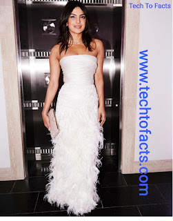 What is the monthly income of Priyanka Chopra?