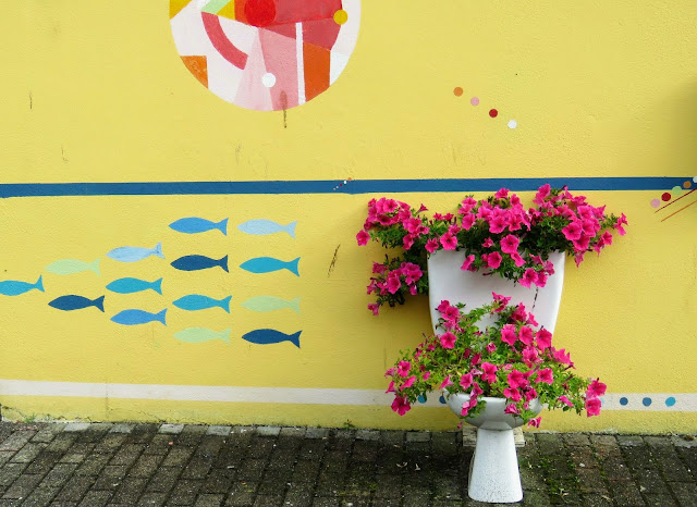 West Cork Ireland: Street art and toilet turned into a flower planter