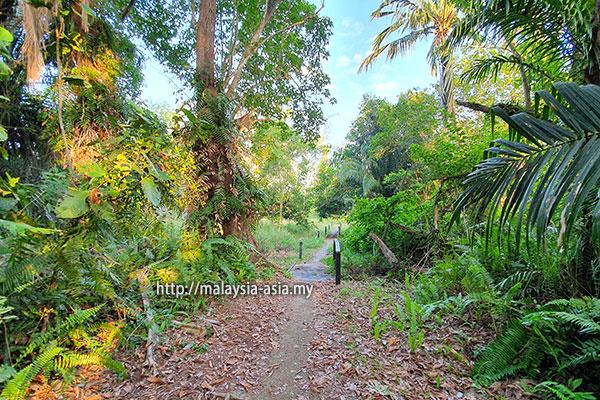 Nature Trail Trek Piasau Miri