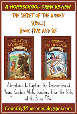 #hsreviews #secretofthehiddenscrolls