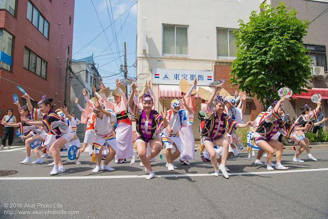 飛鳥連、マロニエ祭り、福井通りの演舞の写真 その4
