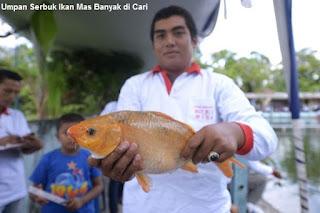 Umpan Serbuk Ikan Mas Banyak di Cari
