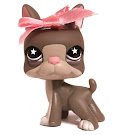 Littlest Pet Shop Multi Pack Boston Terrier (#958) Pet