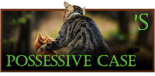Possessive case/genitive
