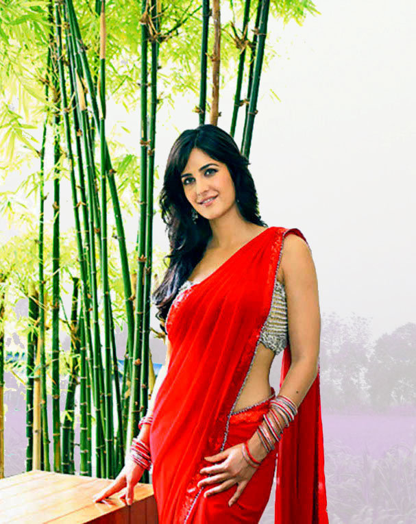 Katrina Kaif Hot Photos In Saree  World Of Celebrity-9586