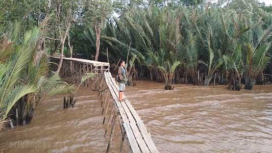 Kawasan Equator park desa jeruju besar kubu raya