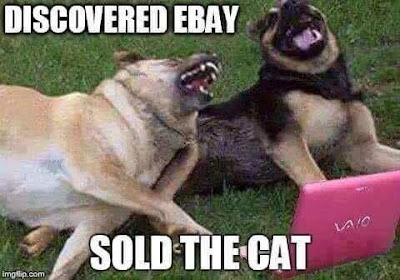 Funny Dog On Pinterest - Hilarious Dogs