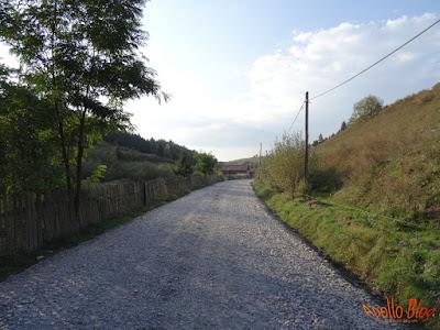 Modernizare drum Filpea