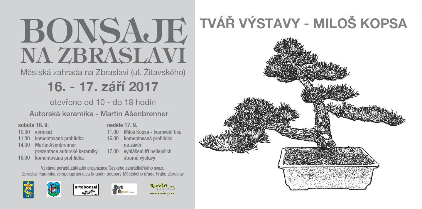 Bonsai Moravia Blog: BONSAJE NA ZBRASLAVI