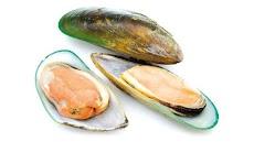 10+ Wonderful Green Lipped Mussel Health Benefits