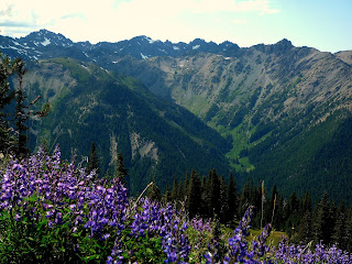 Marmot Pass near the Olympic National Park