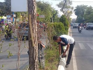 FPD Kota Cirebon Akui Kesulitan Rawat Taman Median Jalan