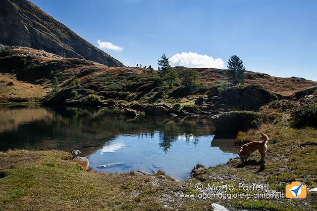 Lago di Paione Inferiore e Ambra