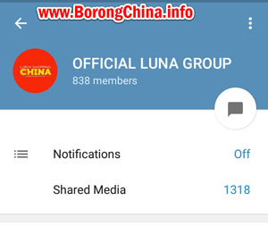 Telegram Group Borong Import China