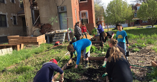 Cultivating Change in The Inner City of St Louis, Missouri with Love the Lou