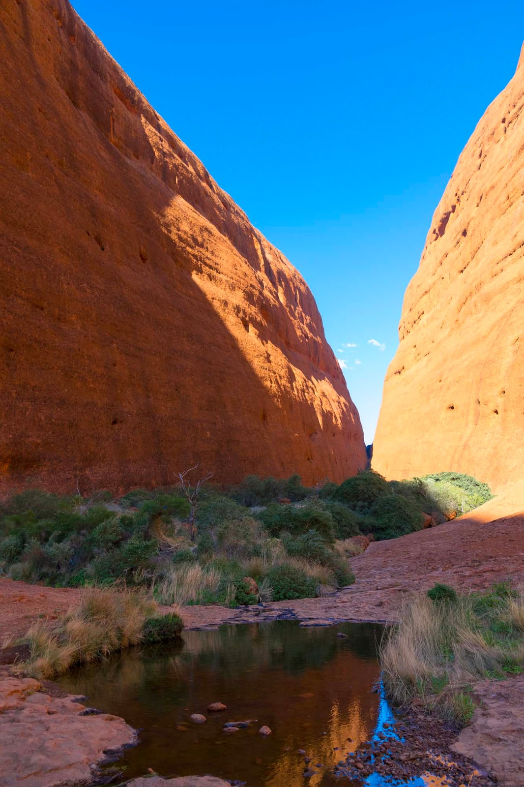 valleys in kata tjuta
