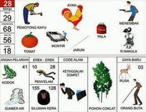 Erek Erek 28 Kode Alam Pohon Cokelat