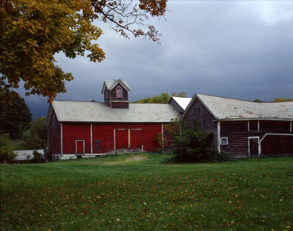 HomeCountry: A BOY, A BARN, AND SQUIRE BOWENS OLD SOW