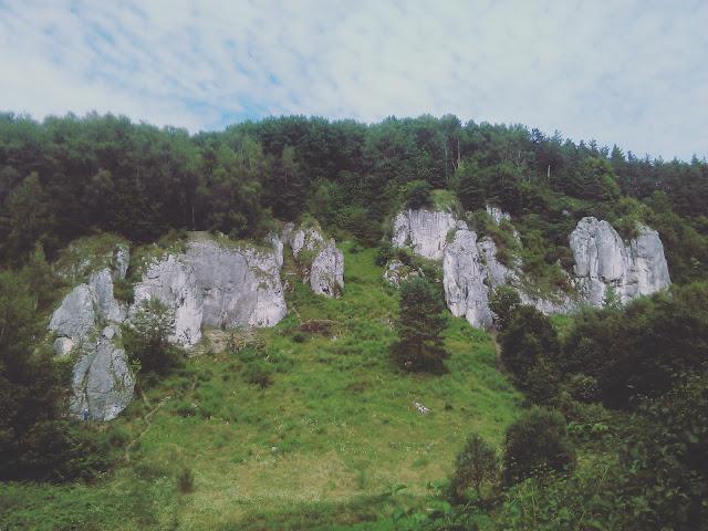 Dzikie miejsca: Dolina Kobylańska