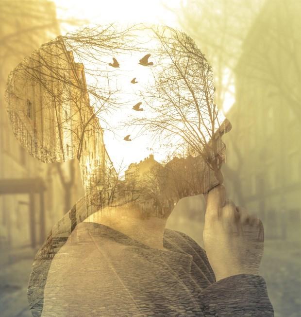 Αναπλάθοντας τον εγκέφαλό μας - Θεραπεύοντας τον φόβο/τραύμα