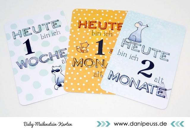 http://www.danipeuss.de/anleitungen-und-tipps/karten/3254-project-life-baby-meilenstein-karten