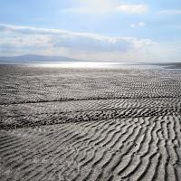 Photos of Ireland: ripples in the sand in County Sligo