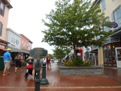 8 Great Places to Shop in Cape May New Jersey