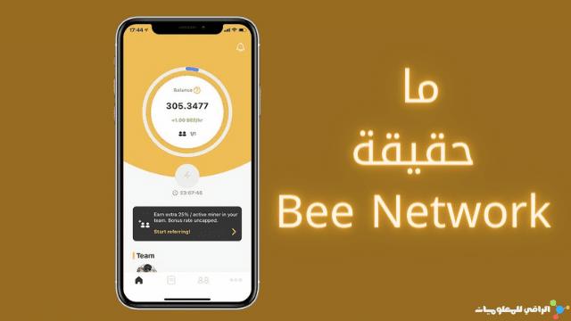 ما حقيقة Bee Network