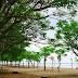 Wisata Pantai Atapupu di Atambua NTT