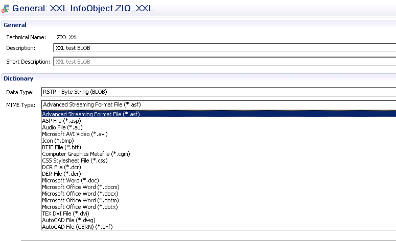 DATA Modeling - InfoObjects in BW/4HANA | SAP BI, SAP BW