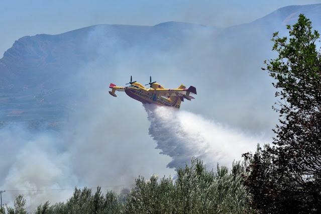 Ενισχύσεις και από την Αργολίδα σε μεγάλη φωτιά στη Λακωνία -  Ανεφοδιασμός canadair στον Αργολικό Κόλπο