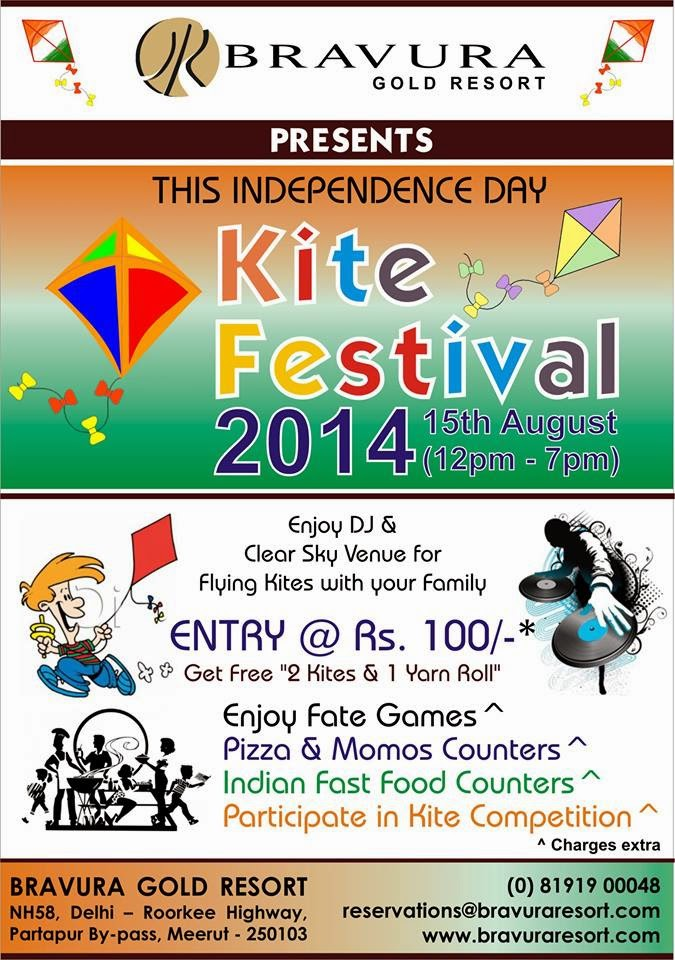 Enjoy Kite Festival