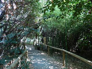 Parco Gallorose(ガッロロゼ公園)遊歩道