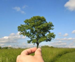 Pengawasaan Dan Pengolahan Lingkungan Hidup