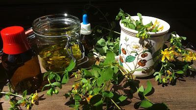 bernadetts blog heilpflanzen und mehr das johanniskraut hypericum perforatum. Black Bedroom Furniture Sets. Home Design Ideas