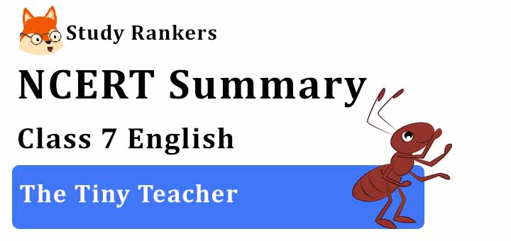 Chapter 1 The Tiny Teacher Class 7 English Summary