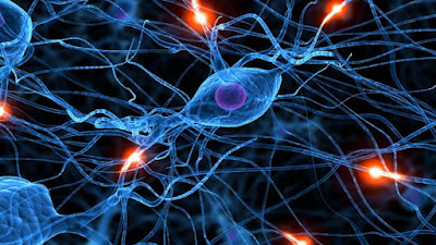 best course to learn deep learning for beginners