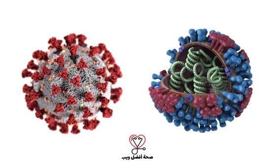 ما الفرق بين فيروس كورونا المستجد وفيروس الانفلونزا؟