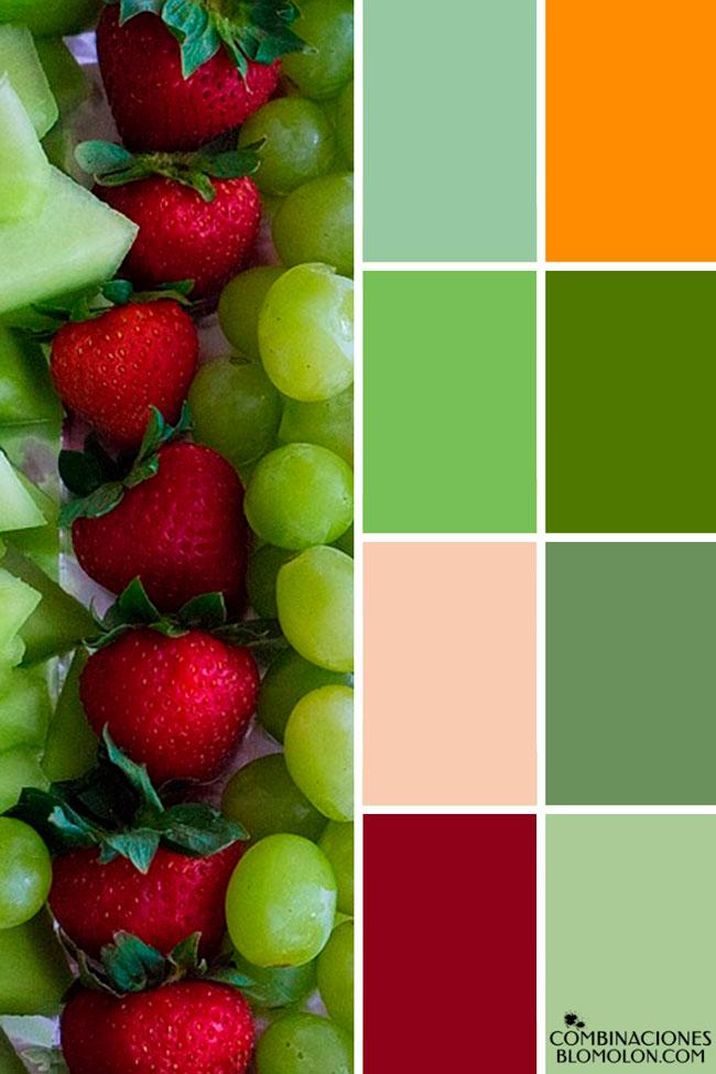 combinacion_de_colores_variedad_1