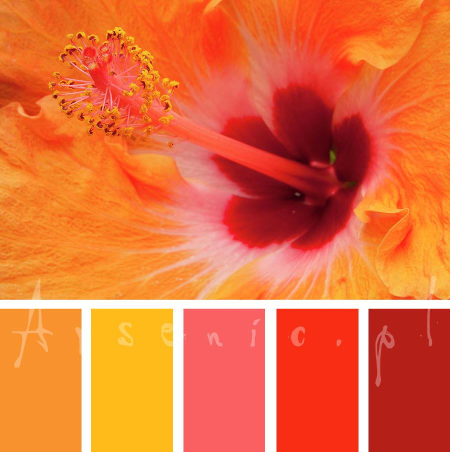 Analiza kolorystyczna: Sabina - ciepła, zielonooka Wiosna