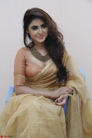 Sony Charistha in Lovely Brown Saree and Choli Spicy Pics ~  Exclusive 04.JPG