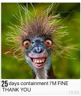 I am fine. thanks for asking  www.jokestotell.com