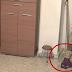 Οι Γονείς κατέγραφαν την κόρη τους να παίζει όταν ξαφνικά.. Προσέξτε την κούκλα στα δεξιά και θα σας σηκωθεί η τρίχα!