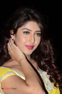 Actress Sonarika Bhadoria Stills in Yellow Saree  0081.JPG