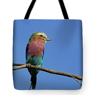 Beach Accessories - Tote Bags